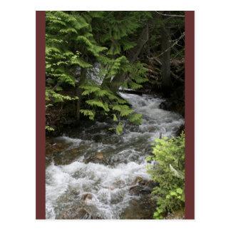 Copper Falls Creek Postcard