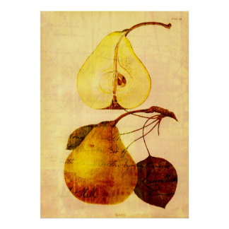 Copper Pear Poster