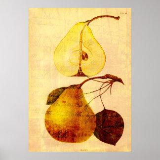 Copper Pear Poster