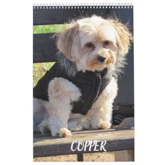 Copper the Havapookie Calendar