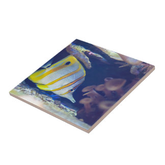 Copperband Butterflyfish Ceramic Tile