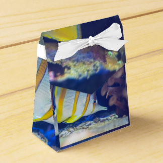 Copperband Butterflyfish Favor Box