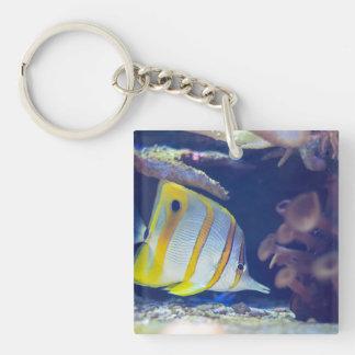 Copperband Butterflyfish Keychain
