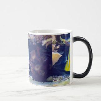 Copperband Butterflyfish Magic Mug