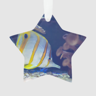 Copperband Butterflyfish Ornament