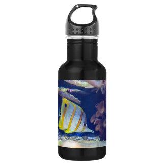 Copperband Butterflyfish Water Bottle