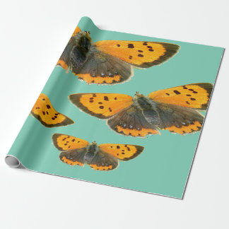 Copperfield butterfly design wrapping paper