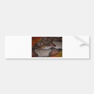 Copperhead Bumper Sticker