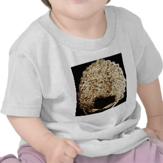 Coppertop T Shirts