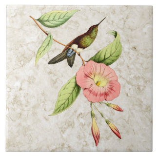 Coppery Bellied Puffleg Hummingbird Ceramic Tile
