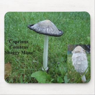 Coprinus comatus mouse pad