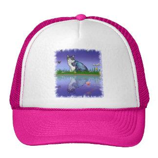 Copy Cat Hats