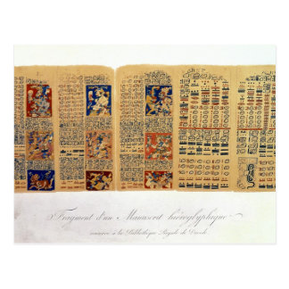 Copy of a fragment of the Dresden Codex Postcard