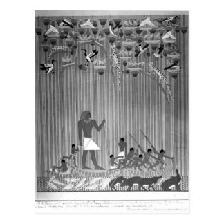 Copy of Egyptian painted relief depicting Fishing Postcard