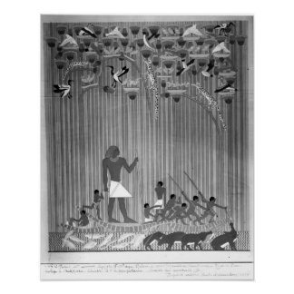 Copy of Egyptian painted relief depicting Fishing Poster