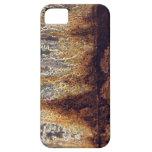 Coque-Compagnon d'iPhone de rouille et de corrosio iPhone 5 Cases