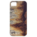 Coque-Compagnon d'iPhone de rouille et de corrosio iPhone SE/5/5s Case