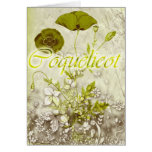 Coquelicot Greeting Card