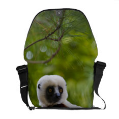 Coquerel's Sifaka In The Forest 2 Messenger Bag at Zazzle
