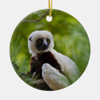 Coquerel's Sifaka in the forest 2 Double-Sided Ceramic Round Christmas Ornament