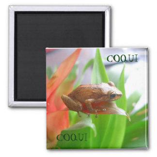 COQUI 2 INCH SQUARE MAGNET