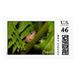 Coqui Postage Stamps