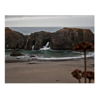 Coquille Point Arches, Oregon Postcard