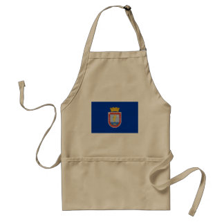 Coquimbo Region, Chile, Chile flag Aprons