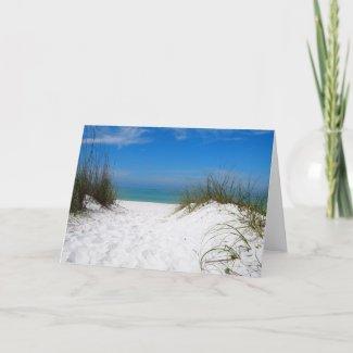 Coquina Beach Card