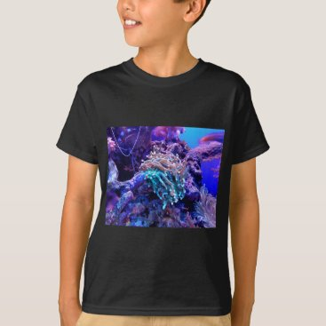 Beach Themed coral-1053837 T-Shirt