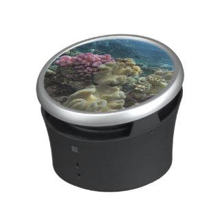 Coral, Agincourt Reef, Great Barrier Reef, Bluetooth Speaker