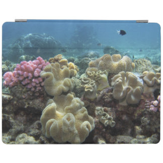 Coral Agincourt Reef Great Barrier Reef iPad Cover