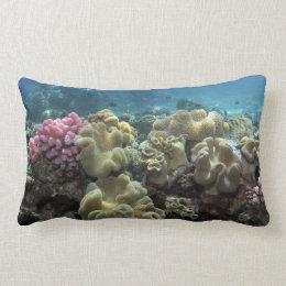 Coral, Agincourt Reef, Great Barrier Reef, Lumbar Pillow