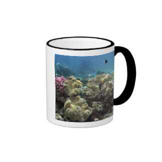 Coral, Agincourt Reef, Great Barrier Reef, Ringer Mug