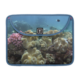 Coral, Agincourt Reef, Great Barrier Reef, Sleeves For MacBooks