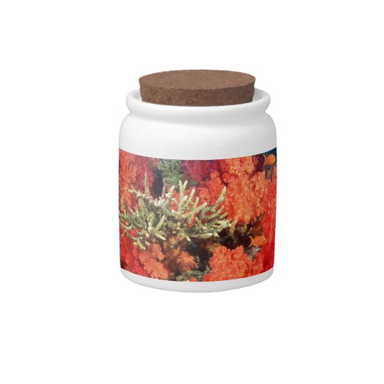 Coral and fish candy jars