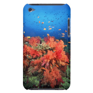 Coral and fish barely there iPod cover