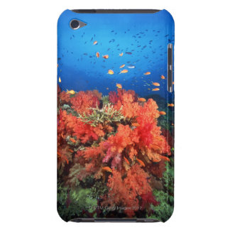 Coral and fish barely there iPod covers
