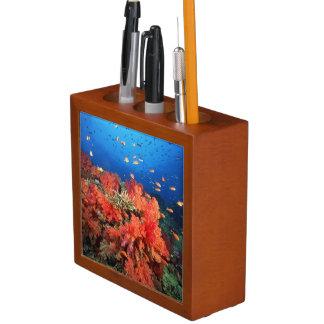 Coral and fish desk organizers