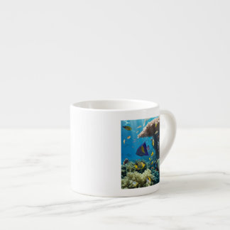 Coral and fish in the Red Sea, Egypt Espresso Cup