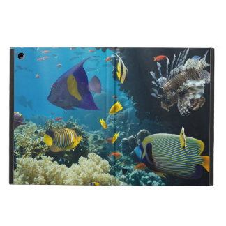 Coral and fish in the Red Sea, Egypt iPad Air Cover