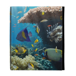 Coral and fish in the Red Sea, Egypt iPad Folio Covers