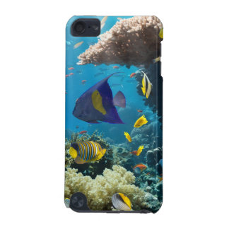 Coral and fish in the Red Sea, Egypt iPod Touch 5G Cover