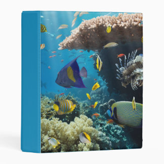 Coral and fish in the Red Sea, Egypt Mini Binder