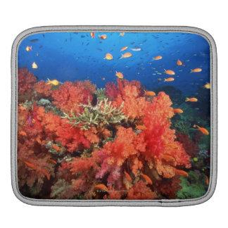 Coral and fish iPad sleeve
