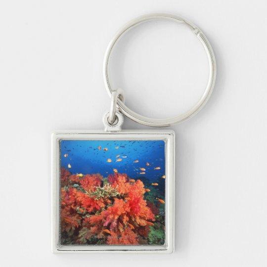 Coral and fish keychain