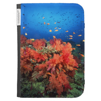 Coral and fish kindle 3 covers