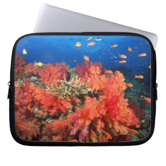Coral and fish laptop computer sleeve