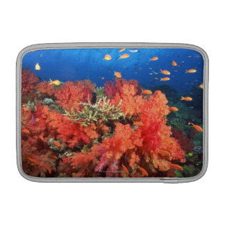 Coral and fish MacBook sleeve