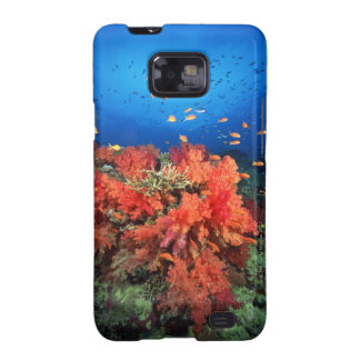Coral and fish samsung galaxy SII cover